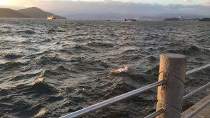 広島の釣り情報やポイントをFeedly(フィードリー)を使って収集する方法